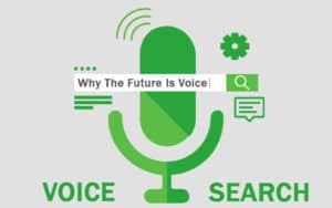 improving seo with voice search