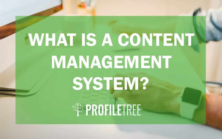 what is a content management system