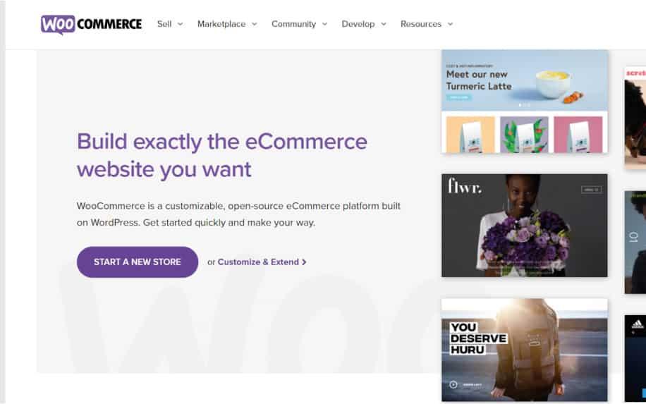 What is a WordPress plugin woocommerce