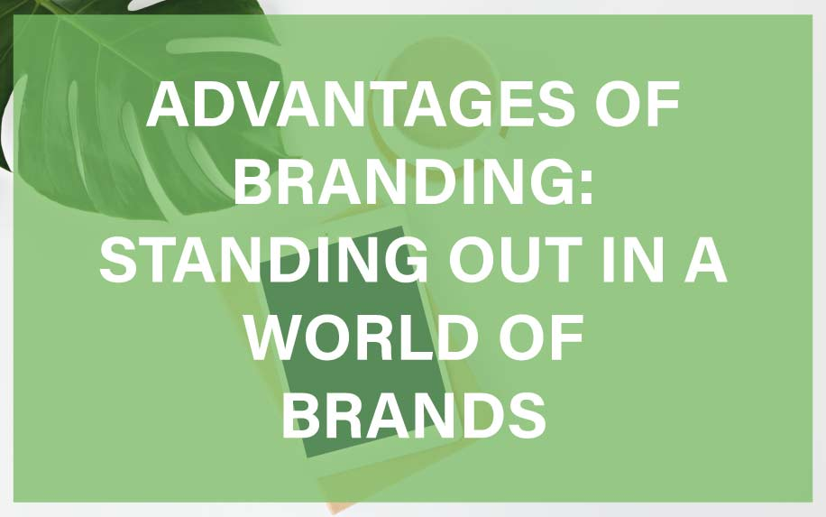 Advantages of branding featured image