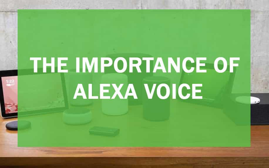 significance of Alexa Voice header image