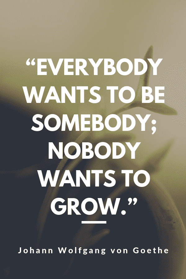 """Everybody wants to be somebody; nobody wants to grow."" - Johann Wolfgang von Goethe"