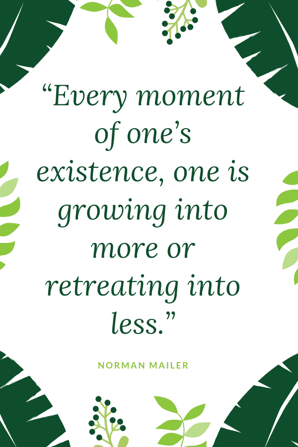 """Every moment of one's existence, one is growing into more or retreating into less."" - Norman Mailer"