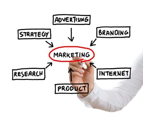 Marketing prospects and fields of work.