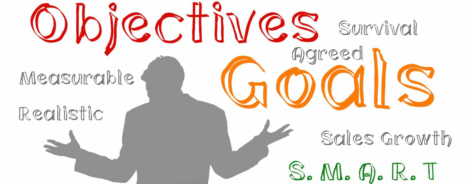 Business Objectives and Goals Defining the How