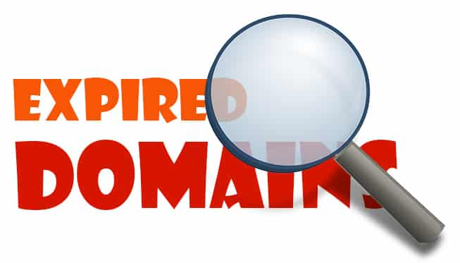How to Successfully Acquire Valuable Expiring Domains at Little Cost