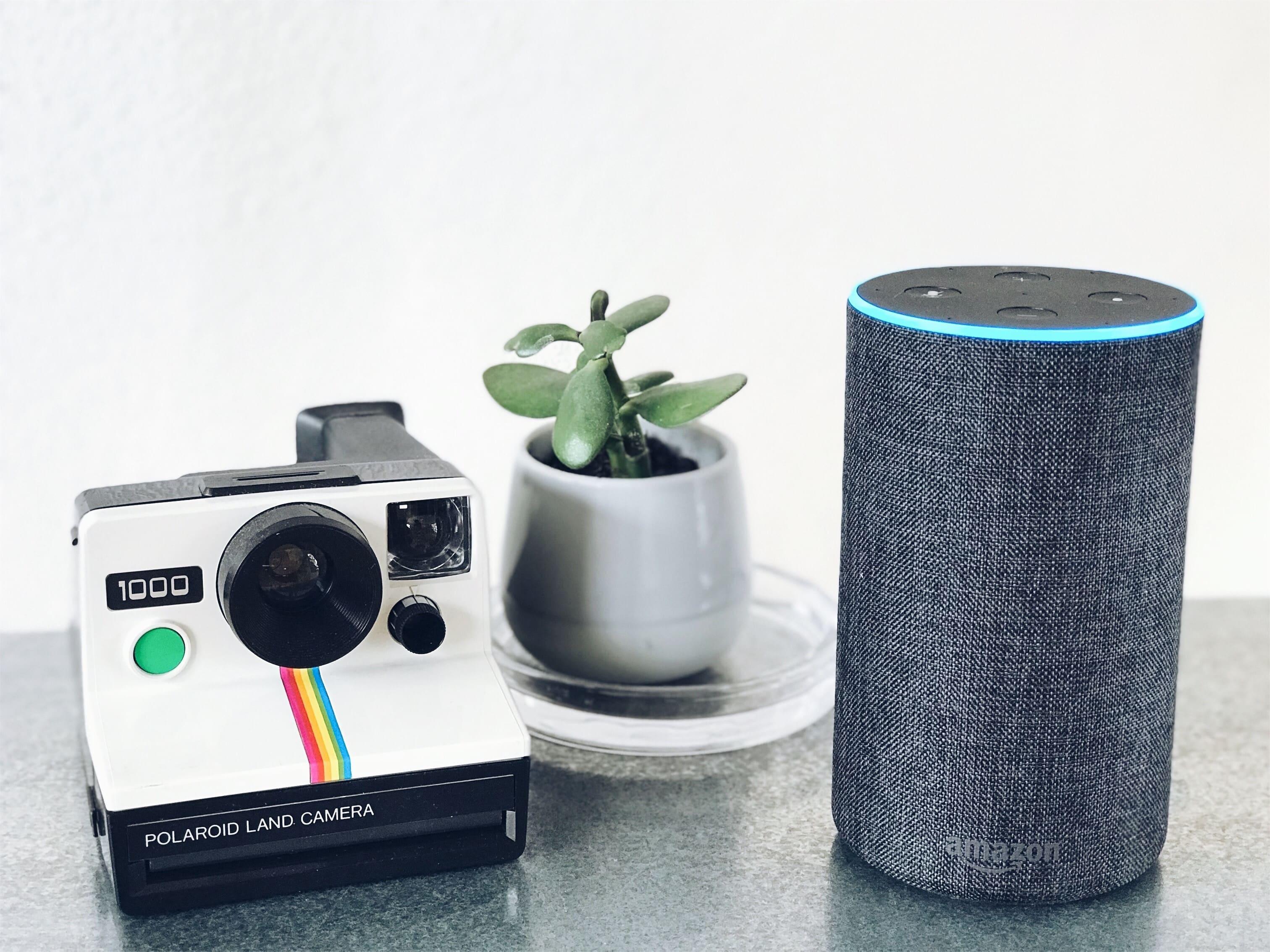 The Future of voice search, voice search SEO and importance of voice search for a business