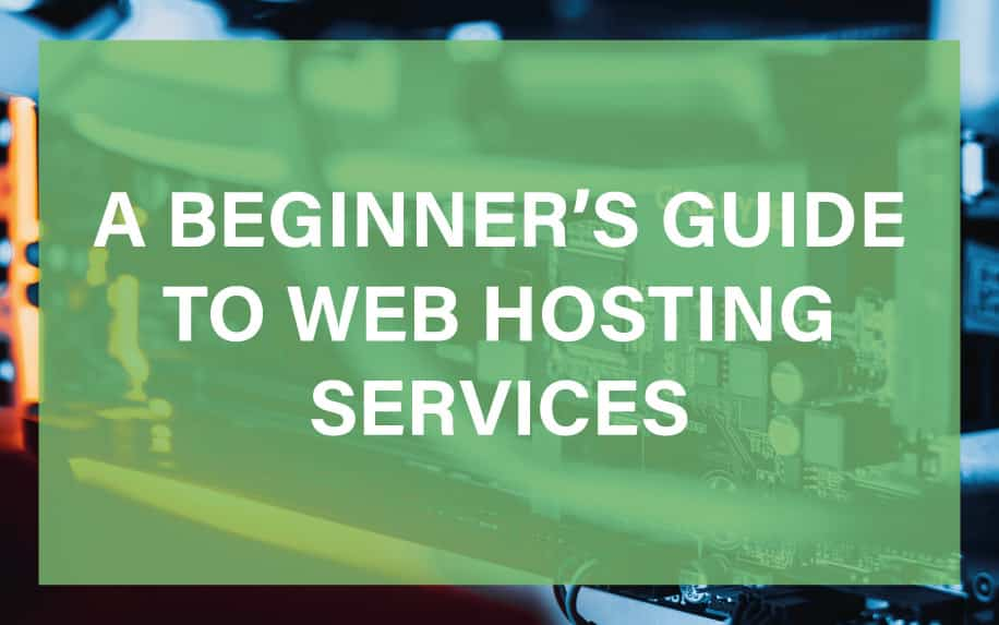 Beginners guide to web hosting featured