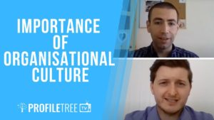 importance of organisational culture