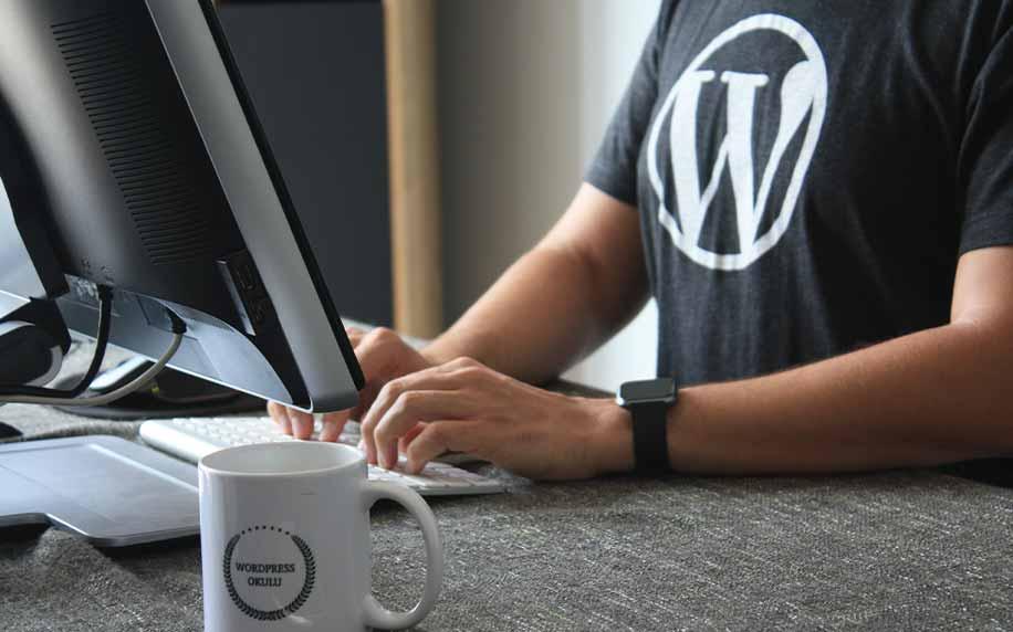 ultimate guide to wordpress