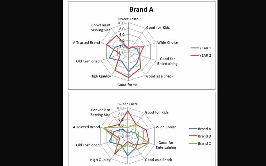 a spider web map helps sample the attributes customers value when making a purchase