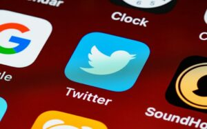 Image showing the Twitter logo to introduce it as the topic.