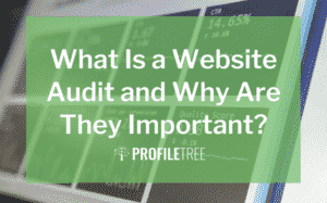 image for the what is a website audit and why are they important blog