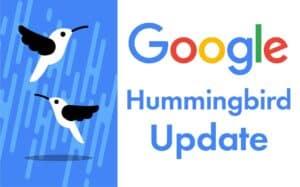 google hummingbird update featured image