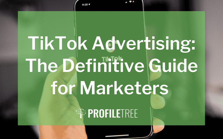image for the tiktok advertising: the definitive guide for marketers blog