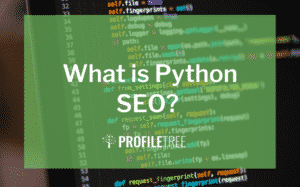 image for what is python seo blog