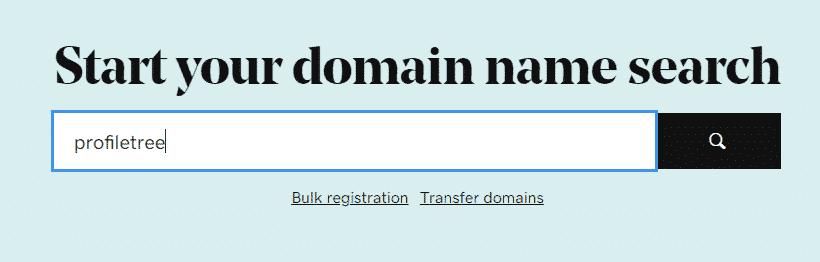 GoDaddy's domain name checker